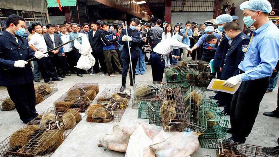 Coronavirus: Les experts de l'OMS sont enfin arrivés à Wuhan