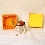 chameau petit