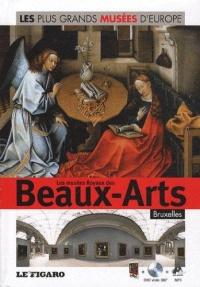 les-plus-grands-musees-d-europe-les-musees-royaux-des-beaux-arts-bruxelles-dvd-volume-15