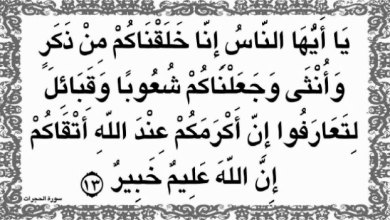 "Photo of ""يأيها الذين آمنوا ادخلوا في السلم كافة"""