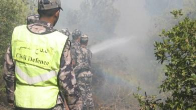 """Photo of """"صحة النواب"""" تدعو لتشكيل لجنة لوضع خطط طوارئ لمواجهة حرائق الغابات"""