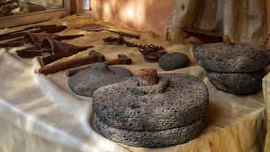 Photo of دير علا: لواء يتمتع بإنتاج زراعي وفير ويزخر بمواقع سياحية تنتظر المزيد من الرعاية