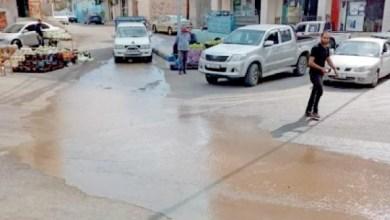 Photo of عجلون: رصد مخالفات بيئية خطيرة في أسبوع.. ومطالب بإجراءات رادعة