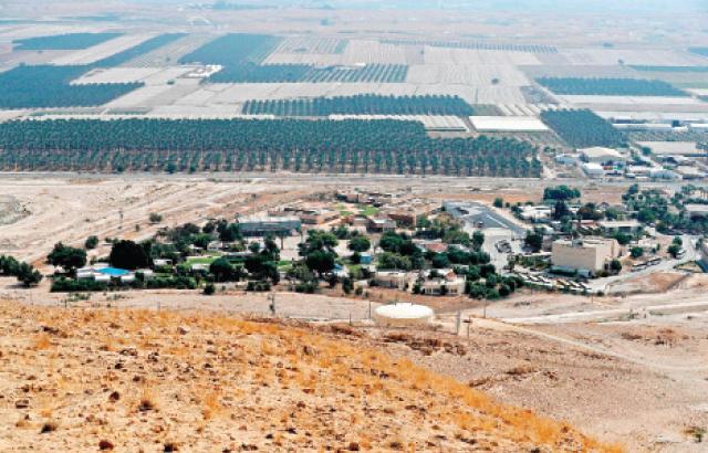 مشهد عام لمنطقة غور الأردن في الضفة الغربية .-(ا ف ب)