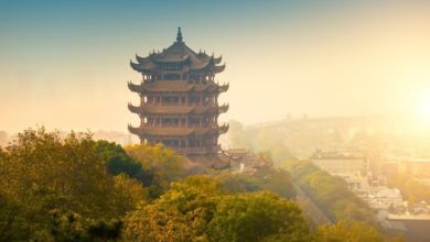 Photo of فيروس صيني غامض: إلى أي مدى ينبغي أن نقلق بشأنه؟