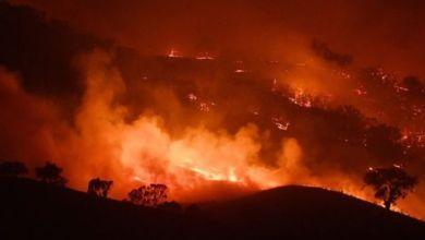جانب من الحرائق في استراليا -