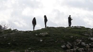 Photo of ربيع وسياح
