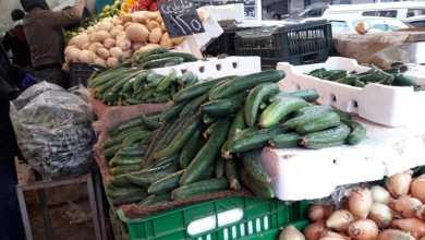 Photo of كورونا يرفع أسعار البندورة والخيار 400 %  في أسواق إربد (صور)