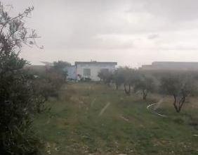 Photo of المفرق: أمطار غزيرة وتساقط للبرد (فيديو)