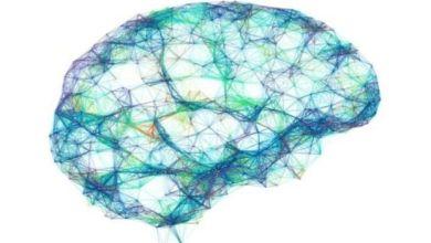 استخدم العلماء خوارزميات تهدف إلى تحويل أنماط الدماغ إلى جمل في نفس الوقت