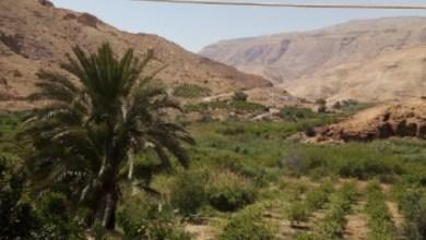 Photo of عفرا والبربيطة وسيل الحسا سلة غذاء الطفيلة بلا مكتب خدمات زراعية