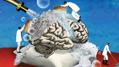 وينتج مرض ألزهايمر أعراضا شائعة في جميع أشكال الخرف. وأكثر الأعراض شيوعا فقدان الذاكرة.