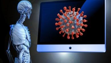 "Photo of دراسة: الرجال ينتجون أجساما مضادة لـ""كورونا"" أكثر من النساء"