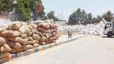 Photo of مزارعون بالكرك يشكون: تخفيض أسعار شراء الحبوب وتأخير بتسليم أثمانها