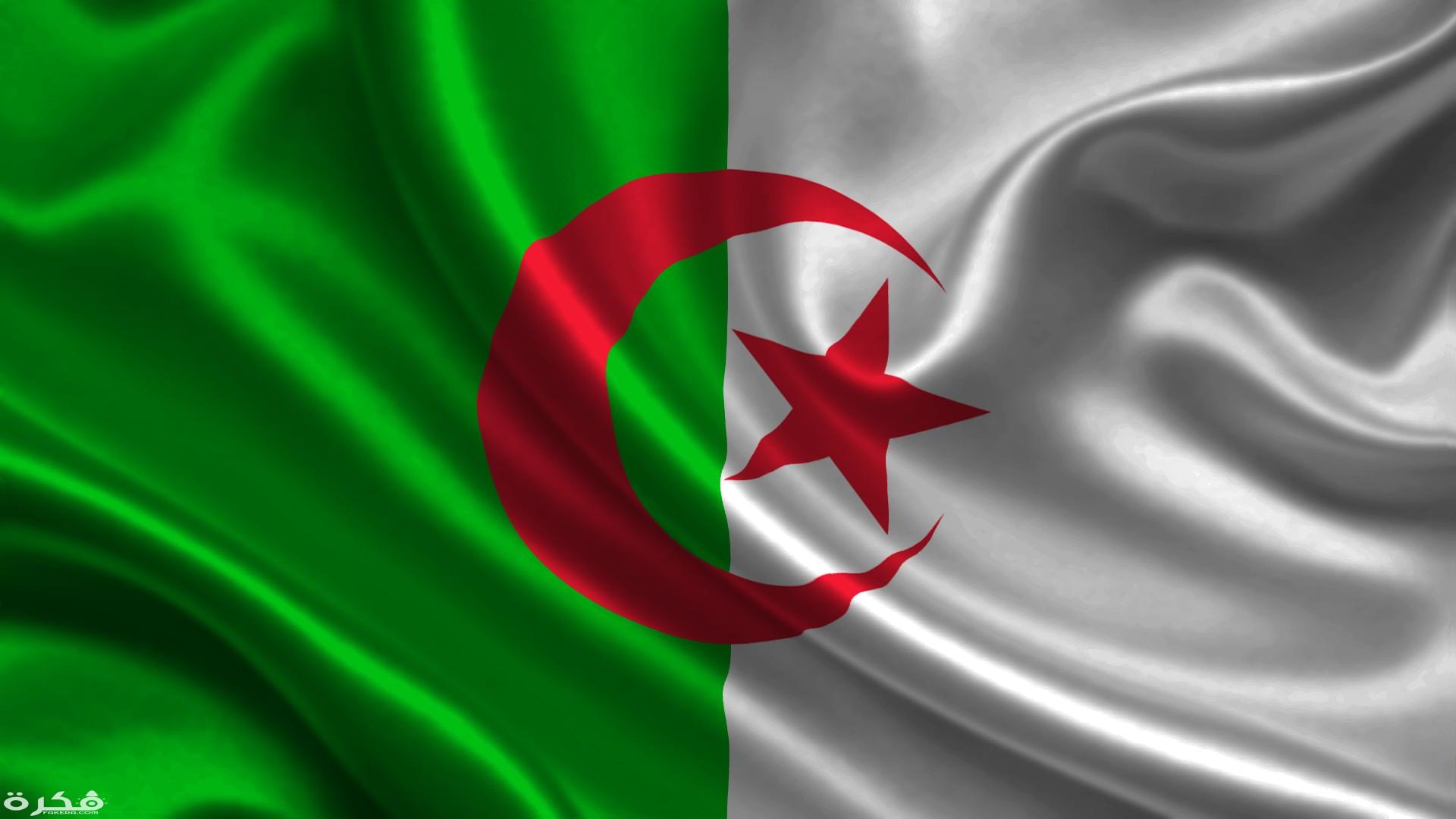 مقاطعة قياسية للاستفتاء الدستوري في الجزائر - Alghad