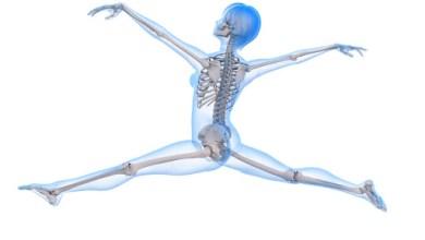 Photo of أفضل مكمّلين غذائيين لعظام أقوى!