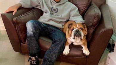 """Photo of تغريدات.. هاميلتون """"لا نستحق الكلاب"""" وكوكي سعيد بتمثيل اسبانيا"""