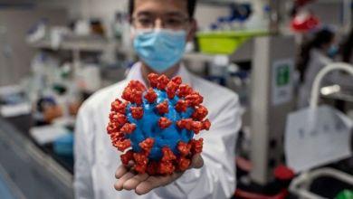 Photo of سلالة فيروس كورونا الجديدة: كيف تحدث الطفرات ولماذا؟