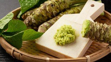 Photo of الجائحة أثّرت سلباً على الواسابي..الذهب الأخضر للمطبخ الياباني