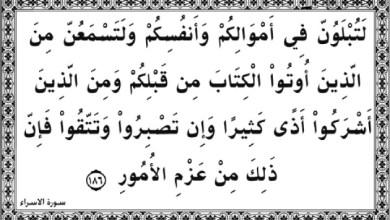 "Photo of ""إنه من يتق ويصبر فإن الله لا يضيع أجر المحسنين"""