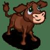 Brown Calf Se vende por: 120 Tamaño: 1x1