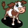 Calf Se vende por: 120 Tamaño: 1x1
