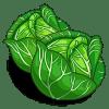 Cabbage Categoria: Vegetables Coste: 140 Tiempo crecimiento: 1 Dia 22 Horas Monedas que produce: 388 XP que produce: 2 Tamaño: 4x4