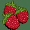 Raspberries Categoria: Fruits Coste: 20 Tiempo Crecimiento: 2 Horas 4 Segundos Monedas que produce: 46 XP que produce: 0 Tamaño: 4x4