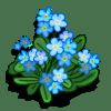 Forget-Me-Not Promoción: Yukon Categoria: Flowers Starts: 1/20/2010 Ends: 01/29/2010 Coste: 45 Tiempo crecimiento: 18 Horas 32 Segundos Monedas que produce: 126 XP que produce: 2 Tamaño: 4x4