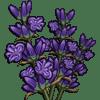Lavender Categoria: Flowers Coste: 160 Tiempo crecimiento: 1 Dia 22 Horas Monedas que produce: 384 XP que produce: 2 Tamaño: 4x4