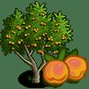 Apricot Tree Regalo Monedas que produce: 56 Se vende por: 30