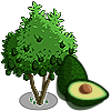 Avocado Tree Regalo Monedas que produce: 37 Se vende por: 21