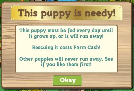 Pantalla para alimentar al perro que cuesta monedas en Farmville