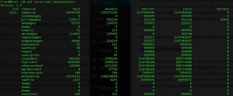 Cómo solucionar problemas de memoria en OpenVZ o Virtuozzo (Servidores VPS)