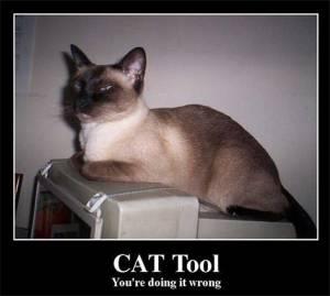Herramientas TAO CAT de traducción