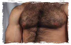 corps poilu