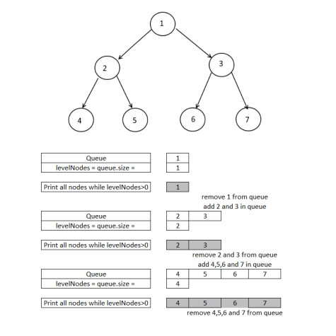 Level Order Traversal, Print each level in separate line.