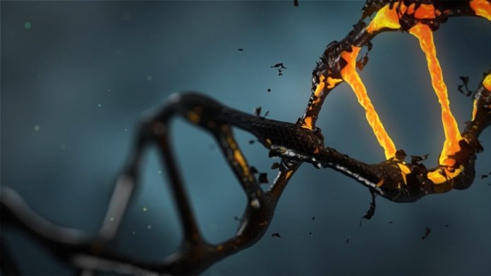 Genomics Secures $25 million to Boost Machine Learning in Genetics