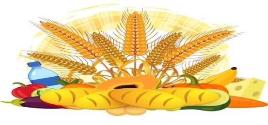 Ανταγωνιστική προοπτική αγοράς φυτικών λιπών και πρόβλεψη έως το 2025