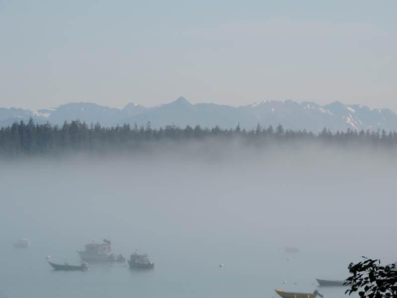 ערפילי בוקר במפרץ ברטלט