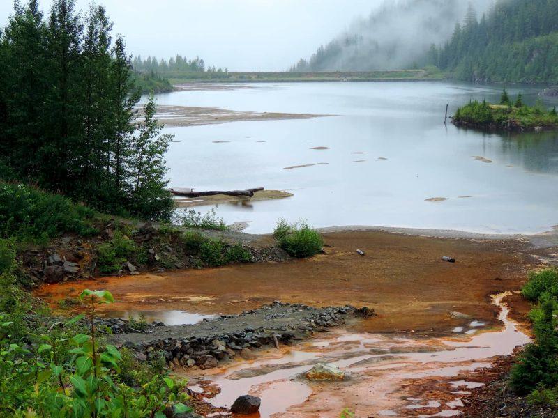 אלסקה- נהר הסלומון