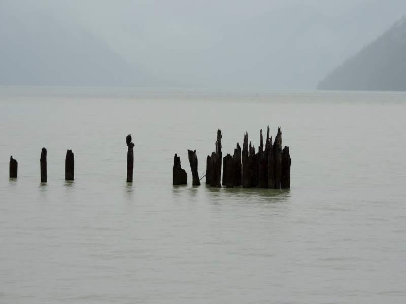 היידר, מעגן בתעלת פורטלנד