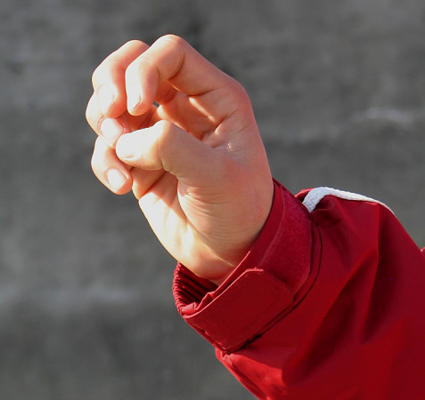 kungfu fist