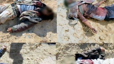 قتلى بيد الجيش المصري