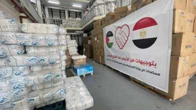Photo of وزيرة الصحة : إرسال 65 طنًا من الأدوية والمستلزمات الطبية لدعم الأشقاء الفلسطينين بقطاع غزة