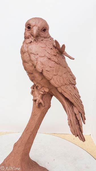Newest bird sculptures, kestrel, dragonfly