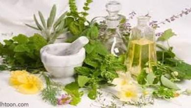 الأعشاب الطبيعية وفوائدها-صحيفة هتون الدولية