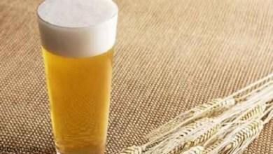 فوائد شراب الشعير للكلى -صحيفة هتون الدولية-