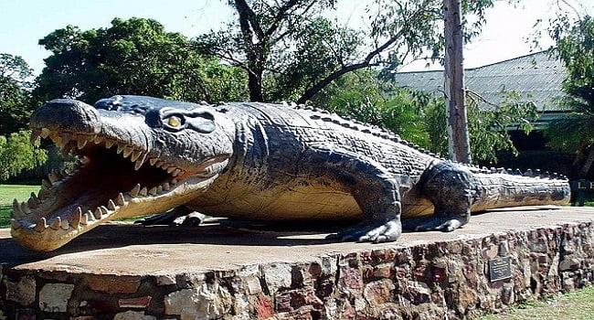 مسابقه لصيد اكبر تمساح