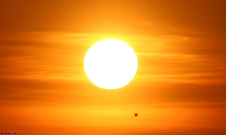 شاهد: خريطة للأبعاد الشمسية